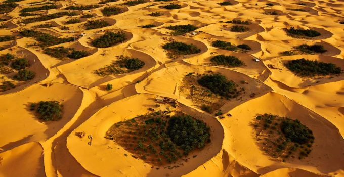 The Beauty Sahara Desert